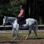 11.Szkółka jeździecka