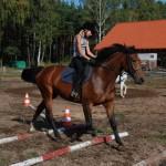 07.Szkółka jeździecka