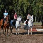12.Szkółka jeździecka