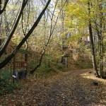 ścieżka ekologiczna - skansen w Sierpcu 2