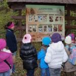 edukacja_przyrodnicza_w_lesie_4 skansen Sierpc
