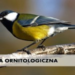 sciezka_ornitologiczna