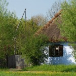 Chałupa z Izdebna wśród zieleni - wiosna w Muzeum Wsi Mazowieckiej w Sierpcu