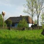 Łąka i zagroda z Izdebna - wiosna w Muzeum Wsi Mazowieckiej w Sierpcu
