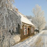 Zima, wiejska droga, drewniana chałupa, w tle ośnieżone drzewa - Muzeum Wsi Mazowieckiej w Sierpcu