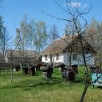 Pasieka i chałupa z Osytrowa - wiosna w Muzeum Wsi Mazowieckiej w Sierpcu