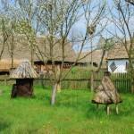 Słomiane ule i zagroda z Izdebna - wiosna w Muzeum Wsi Mazowieckiej w Sierpcu