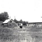 Zdjęcie archiwalne - majątek Bojanowo - obecnie Muzeum Wsi Mazowieckiej w Sierpcu
