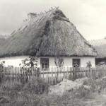 Zdjęcie archiwalne - zagroda z Zawad, obecnie w skansenie w Sierpcu