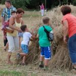 Żniwa 2013, skansen w Sierpcu - zwiedzający pracą przy żniwach