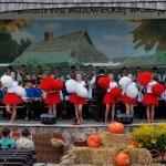 Wykopki 2013, skansen w Sierpcu - koncert, orkiestra dęta i mażonetki