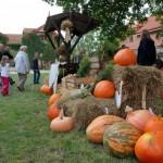 Wykopki 2013, skansen w Sierpcu - kiermasz owoców i warzyw