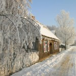 Fot. D. Krzesniak - zima 6m