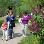 Majówka 2014, skansen w Sierpcu - zwiedzający spacerują po skansenie