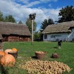 Fot. D Krześniak 045 Iz_2013