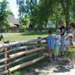 Fot. D Krześniak. Dzień Dziecka w skansenie1 M