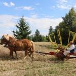 Zwiedzający przyjrzeli się pracy żniwiarki konnej, fot. A Rzeszotarska
