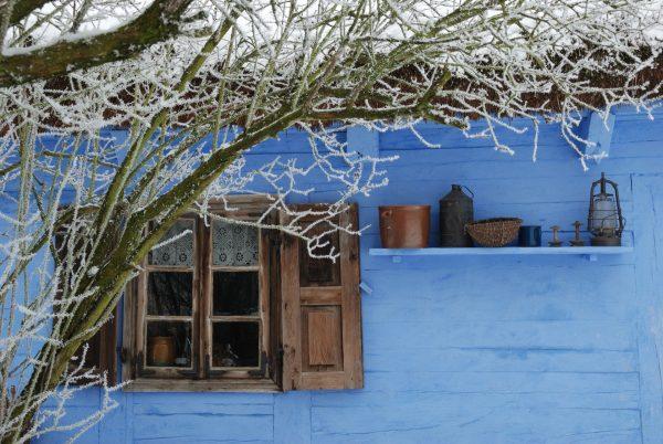Chałupa wiejska zimą, zaśnieżona gałąź - Skansen w Sierpcu