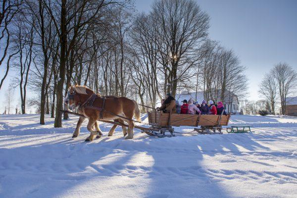 Dzieci jadą w kuligu - Skansen w Sierpcu