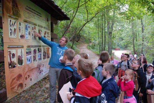 Skansen w Sierpcu - poznawanie mieszkańców lasu