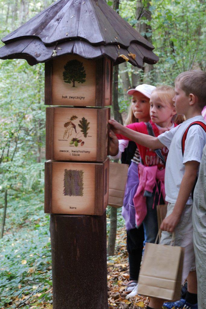 Skansen w Sierpcu - dzieci poznają las