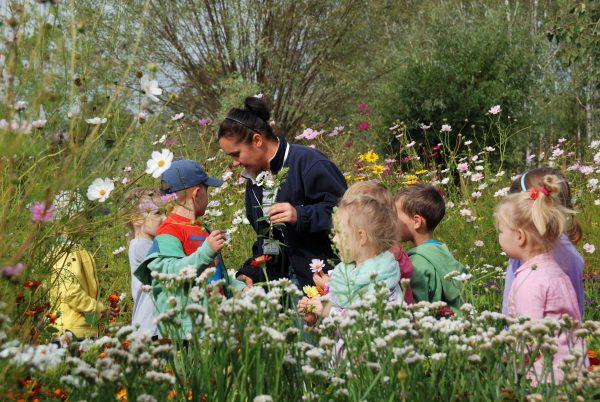 Skansen w Sierpcu - dzieci poznają zioła i kwiaty rosnące w ogrodach
