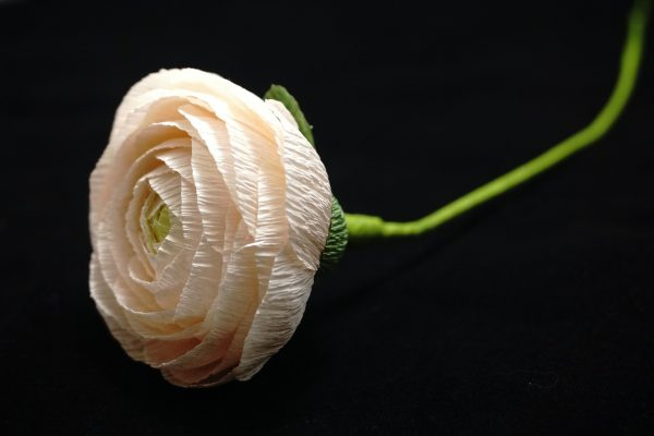 Róża wykonana z bibuły