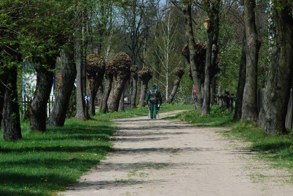 Człowiek odwrócony tyłem idzie wiejską drogą