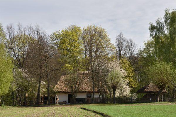 Widok na wieś w okresie wiosennym, MWM w Sierpcu
