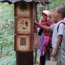 Dzieci w lesie podczas lekcji - Skansen w Sierpcu