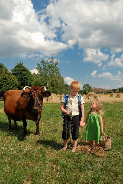 chłopiec i dziewczynka pasą krowę na łące, MWM w Sierpcu