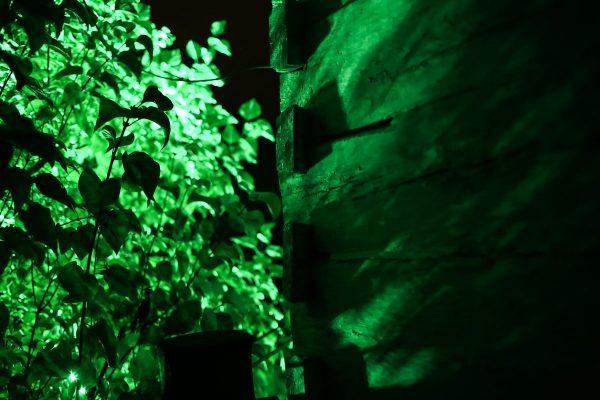 Noc, zbliżenie na ścianę drewnianej chałupy i rośliny w ogrodzie - skansen w Sierpcu