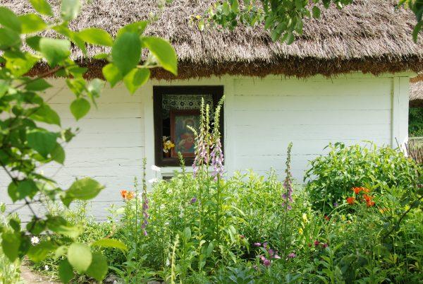 Widok na ogródek kwiatowy i okno chałupy z Ostrowa, MWM w Sierpcu