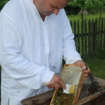 Pszczelarz w stroju wiejskim, zeskrobuje wosk z ramki z miodem, MWM Sierpc