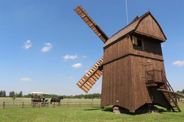 Widok wiejski - wiatrak, w tle pola i bryczka - skansen w Sierpcu