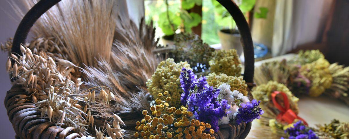 w koszyku suszone kwiaty, zboża i zioła